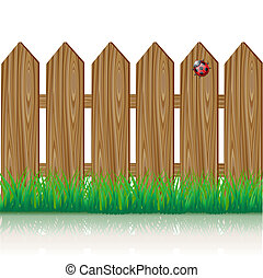 Wooden fence with a green grass and ladybird
