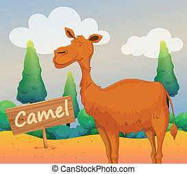 A camel with a wooden signboard