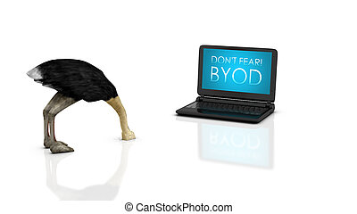 Dont fear BYOD - 3d render of an ostrich with head buried in...