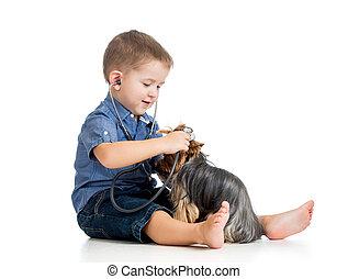 boy child examing dog puppy isolated on white background
