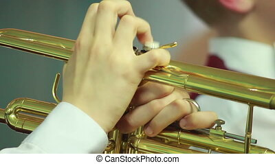 Hands play wind instrument - mans hands playing a wind...