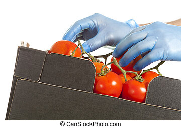 Fruiterer placing a few tomatoes in a box for his sale