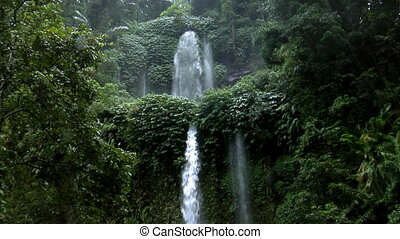 two rain forrest waterfall