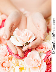 womans hands holding rose - close up of womans hands holding...