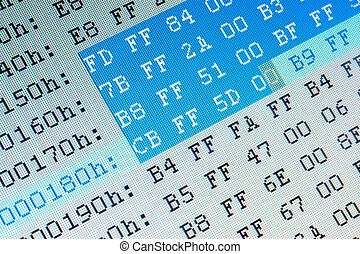 Hexadecimal data close up on computer LCD monitor