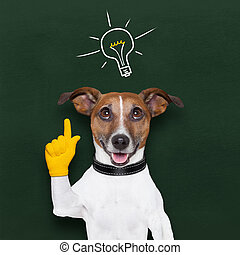 dog idea - smart and clever dog with a light bulb on...