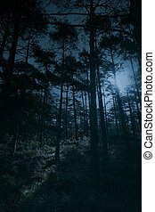 Full moon forest - Full moon rise over a forest at dusk,...