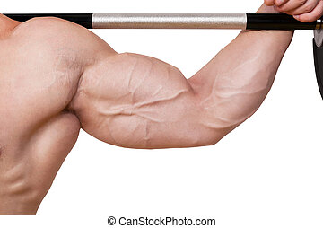 Bodybuilder biceps detail. - Fitness background. Male...