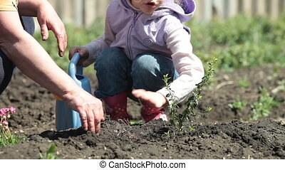 Smallholder Farm - Grandma and Granddaughter Planting Plants...
