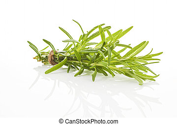 Rosemary bundle isolated. - Rosemary bunch bound with brown...