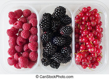 raspberry, blackberry and gooseberry