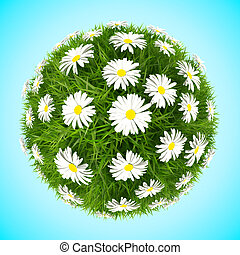 Grass ball with camomiles isolated on blue background...