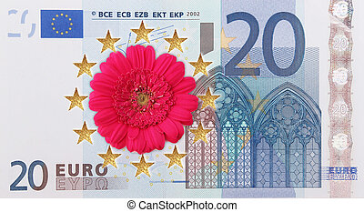 European flag  - A European flag with a flower