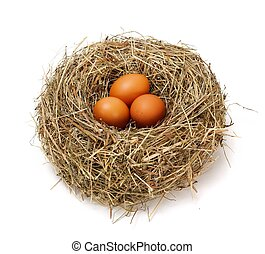 Chicken brown eggs in nest - Three brown chicken eggs in...