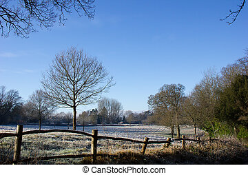 Country Scene in Winter - Countryside scene in winter with...