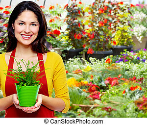 Gardening woman with plant. - Gardening woman with plant in...