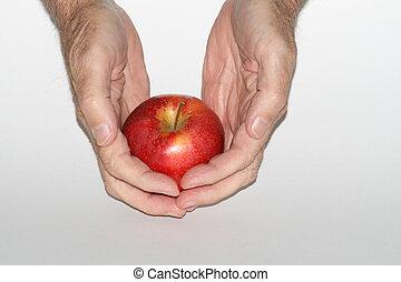 Forbidden Fruit 1 - Hands offering an apple