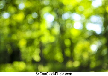 Green background - Green natural background of out of focus...