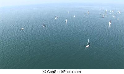 Sail boats at sea