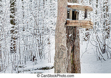 Feeder on tree in winter forest