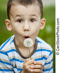 Little boy is playing with dandelion
