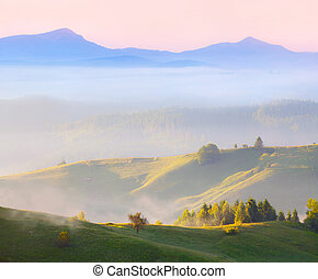 Foggy landscape in the arpathian mountains at summer...