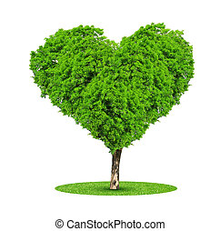 Tree in the shape heart isolated on white background