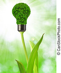 eco energy bulb on green background