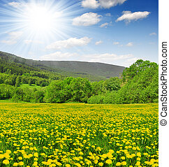 Spring landscape in the national park Sumava - Czech...