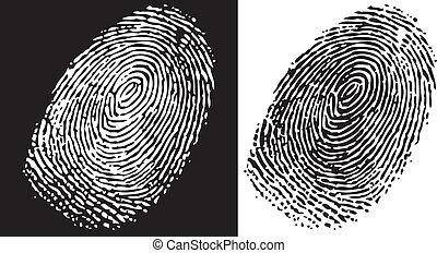 Fingerprint - Black and white finger print background