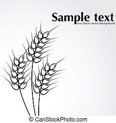 Abstract wheat background.
