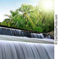 waterfall  - Tropical waterfall