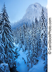 Snowy Ice Blue Stream Snow Mountain Cascade Mountains Snoqualme Pass Washington