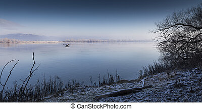 Cold morning riverbank, Danube Hungary