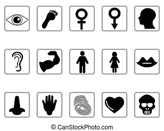 human feature icons - isolated black human feature icons...