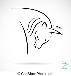 Vector image of an bison on white background