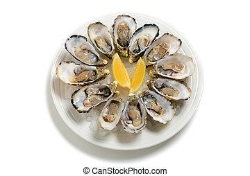 a, douzaine, huîtres, plat