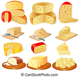 set of different types of cheese - illustration of a set of...