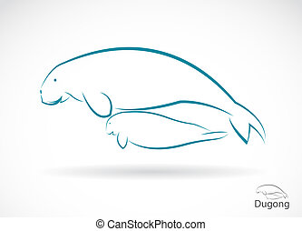dugong - Vector image of an dugong on white background