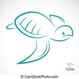 vecteur, image, tortue