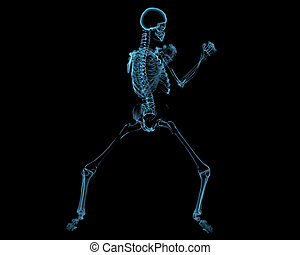 Fighting skeleton 3D xray blue transparent - Fighting...