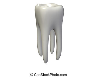tooth - An isolated human tooth on white background