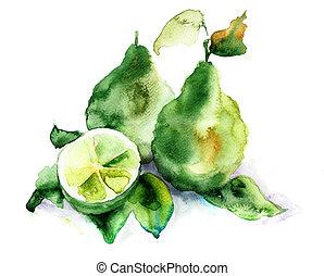 Bergamot fruits, watercolor illustration