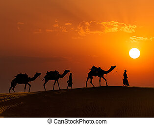 Rajasthan travel background - two indian cameleers camel...