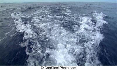water swirl horizont