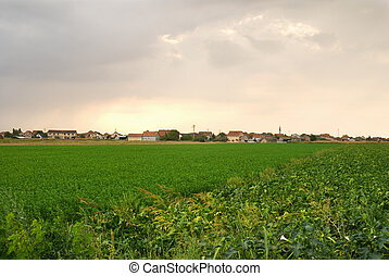 Cloudy - Panorama a level field of one village with overcast...