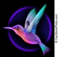 3d render of colibri bird - hummingbird striped silhouette