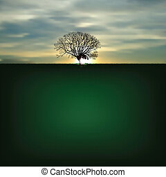 Nature background with silhouette of tree