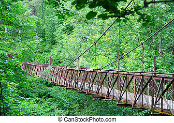 Old bridge in forest - Old narrow bridge in beautiful forest