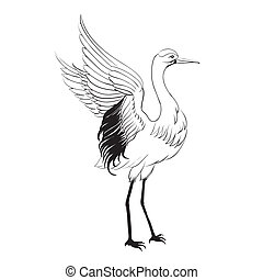 Heron isolated over white. Vector illustration.